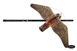 Halcones-Anti-Aves