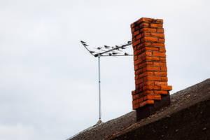 evitar que los pájaros se posen en la antena